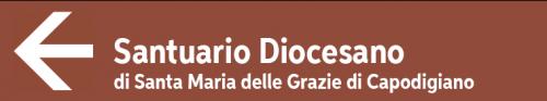 Santuario-Diocesano-di-Maria-Delle-Grazie-di-Capodigiano